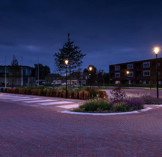 Lightronics-parkeerplaats-Oldebroek-Prunus-A1-Brisa-016